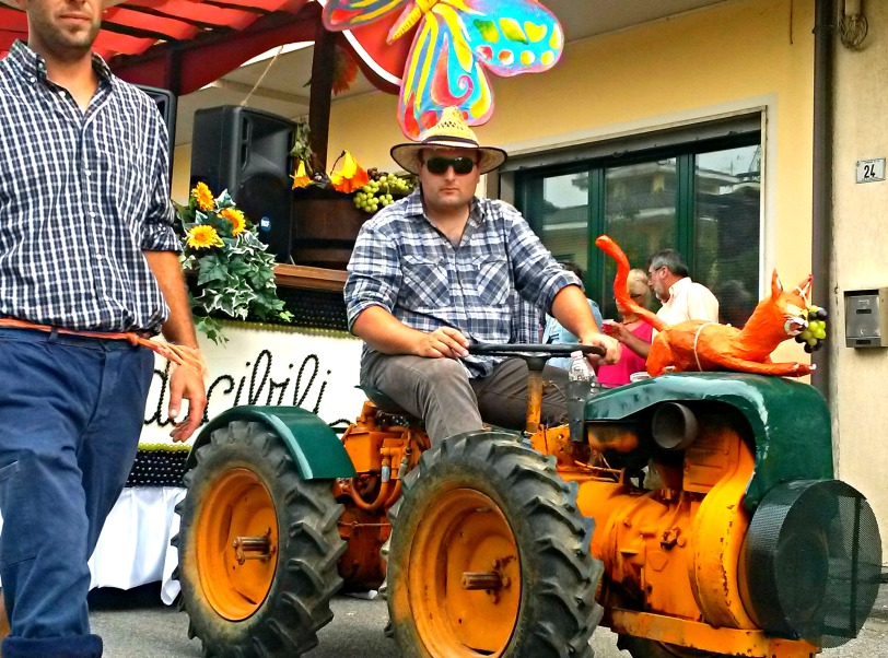 Wine festival parade in Vo: a man and his tractor