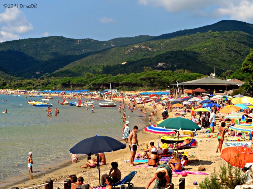 Lacona beach on Elba