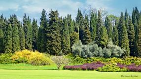 Parco Giardino Sigurta l ©ornaoreilly.com