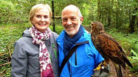 With Tom Weber and Lima the Harris's Hawk.