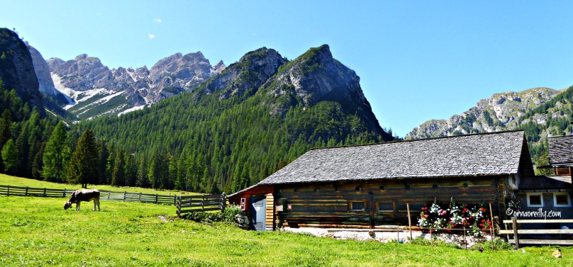 Food of the Dolomites: Cheese l ©ornaoreilly.com
