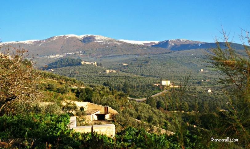 Umbria l ©ornaoreilly.com