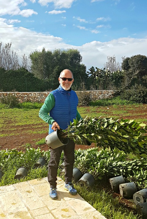 Reluctant Olive Farmer l ©ornaoreilly.com