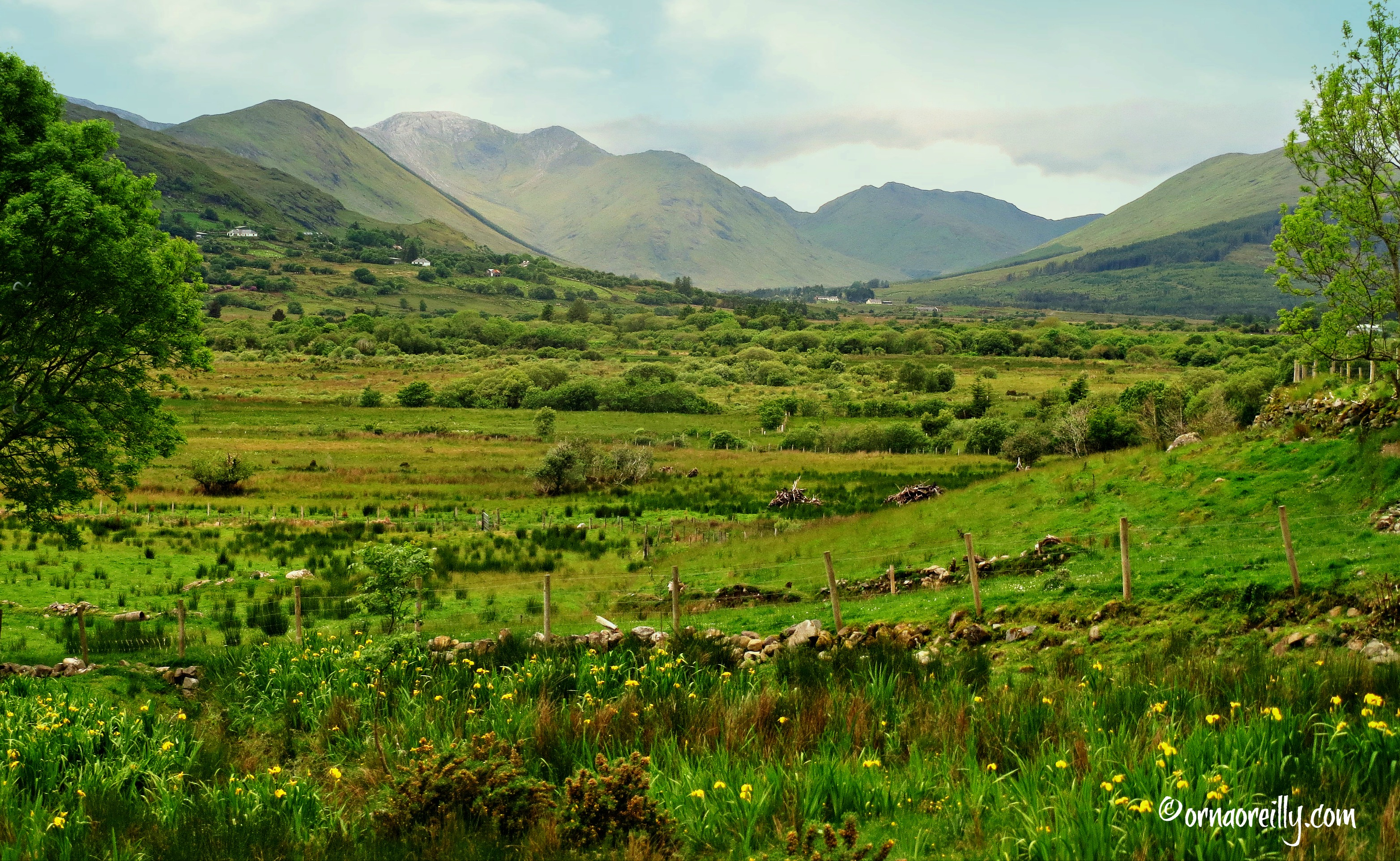 Clifden singles - Meet Clifden lonely people in Ireland