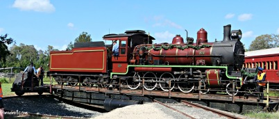 Turntable Mary Valley Rattler