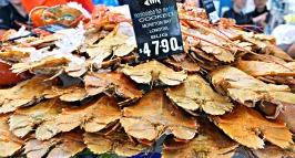 Mooloolaba Fish Market - Bugs