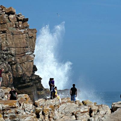Cape Town l ©ornaoreilly.com